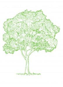 Экологическое сопровождение деятельности предприятий
